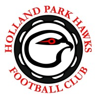The day features the 'Glider Cup' - a game between two Holland Park Hawks kids teams.